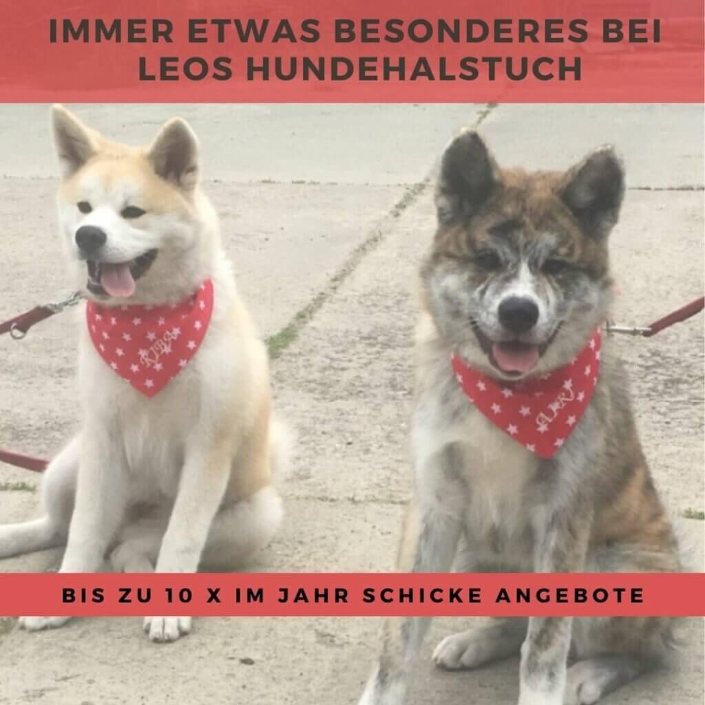 Airi und Kiba mit Hundehalstuch