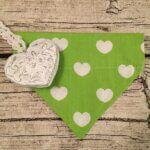 Hundehalstuchgrün mit Herzen