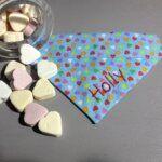 Hundehalstuch Candy Colours: kleine Herzen auf hellblau