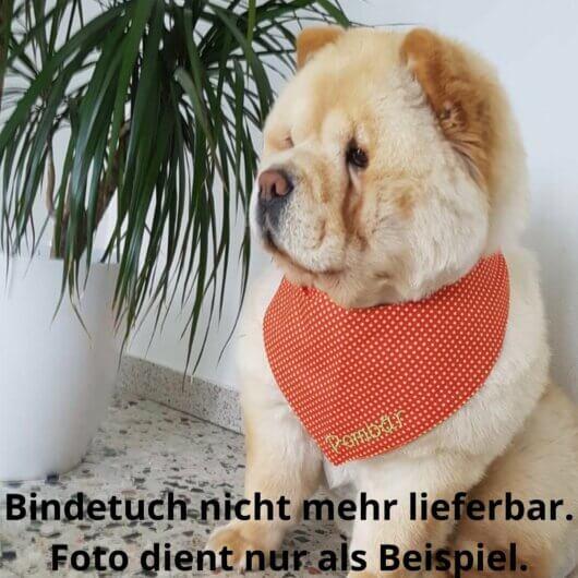 Hundehalstuch Herbstsonne – Punkte Kiwigrün auf Orange