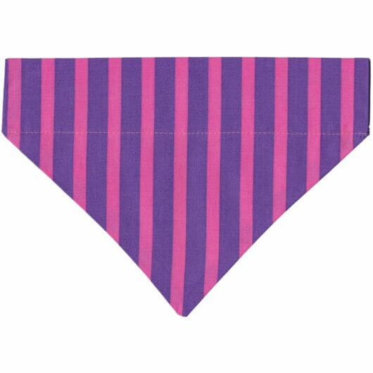 Hundehalstuch Zirkus! Zuckerstangen! Streifen in Lila und Pink