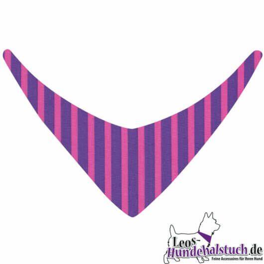 Hundehalstuch mit Zirkus-Streifen in Lila und Pink